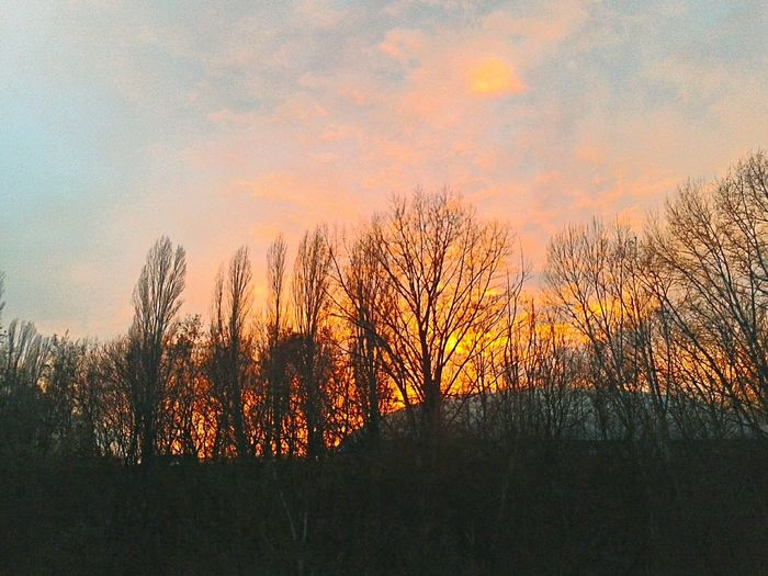 Red clouds, trees and a tennis court. Budapest, Hungary Budapest Sunset Red Clouds Samsung Galaxy Ace 4