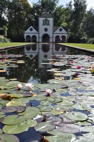Beauty In Nature Floating On Water Flowers Flowers, Nature And Beauty Flowers,Plants & Garden No People Outdoors Reflection Tranquility Water Waterlily Waterlily Pads Waterlilypond