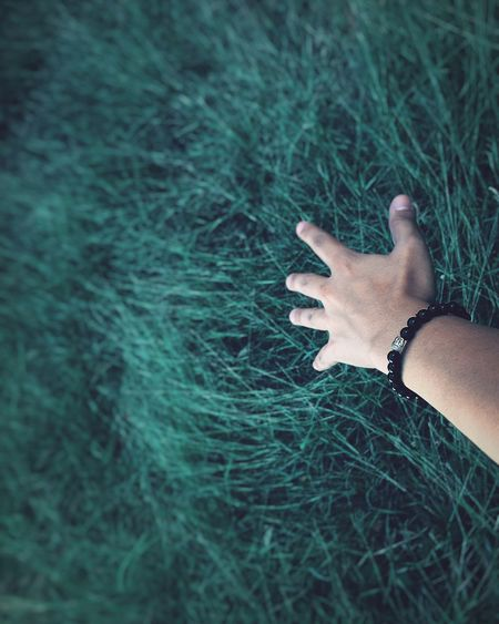 Cropped image of hand touching grass on field