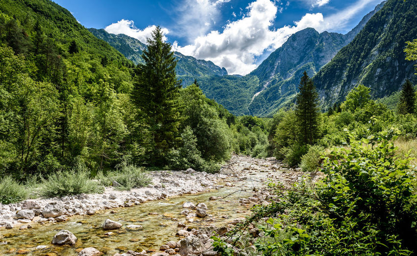 Idyllic mountain river in Lepena valley, Soca - Bovec Slovenia. Heading towards Sunik water grove of river Lepenca. Beautiful landscape scene with forest, mountains and river in Slovenia, Europe. Green Lepena Lepenca Nature Slovenia Soca River Sunik Water Grove Trees Alps Beauty In Nature Bovec Forest Julian Alps Mountain Nature Outdoors River Riverbank Soca Stream Tranquil Scene Tranquility Valley Waterfall Woods