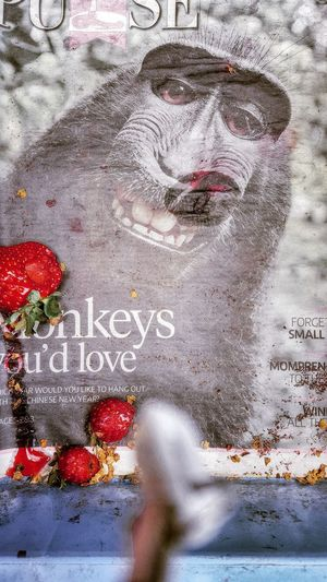 Don't forget to S M I L E 😘 Newspaper on strawberries market stall Check This Out Hello World My Capture  Fresh On Eyeem  The Week Of Eyeem My Point Of View Eyeem Photography Showcase July Street Photography Newspaper Monkey Face Strawberries Market Stall Cameron Highlands Smile Wildlife Photos Colour Of Life Old Newspaper