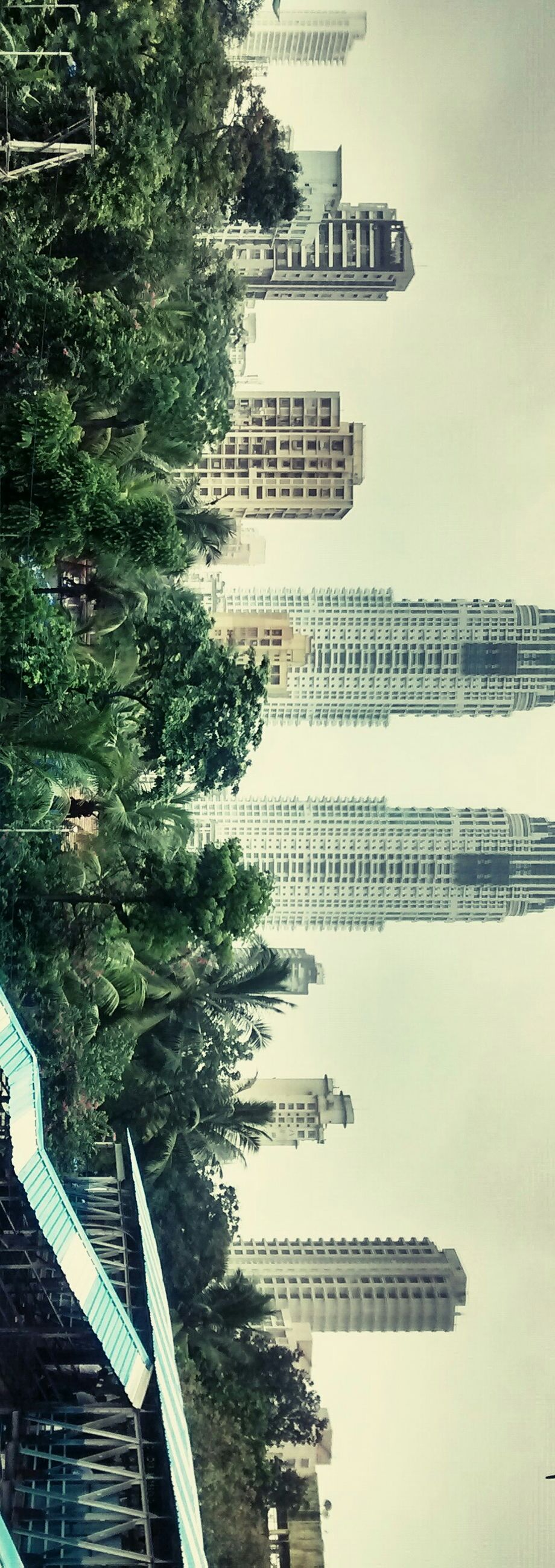 architecture, building exterior, built structure, city, skyscraper, tree, modern, tall - high, water, tower, office building, building, growth, day, outdoors, river, high angle view, sky, no people, clear sky