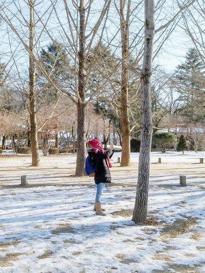 Taking Photos Relaxing Enjoying Life Hello World South Korea Nami Island Snow Day Freezing ❄