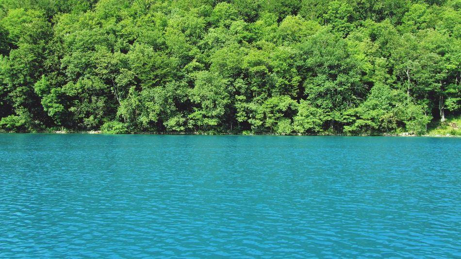 Plitvice National Park Plitvickajezera Croatia Plitvicelake Nature Green And Blue Water Lake View Lakes  Backgrounds Wallpapers EyeEm Best Shots Outdoors Trees