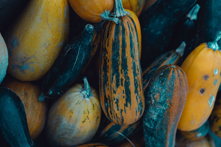 Food And Drink Food Healthy Eating Wellbeing Freshness Market Still Life Retail  Market Stall For Sale No People Large Group Of Objects Close-up Vegetable Choice Pumpkin Day Abundance Raw Food Yellow Organic Retail Display Ripe