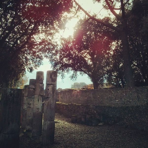 Columns from Pompeii  Pompeiscavi Pompéia Ruins Pompeiiruins Sun Sunlight Sunrays Italia Italy Southitaly