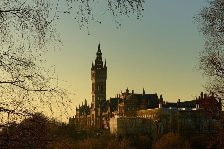 Glasgow University Clock Tower Architecture Bare Tree Branch Building Exterior Built Structure City Cityscape Clear Sky Clock Tower Day Nature No People Outdoors Sky Sunset Tower Travel Destinations Tree