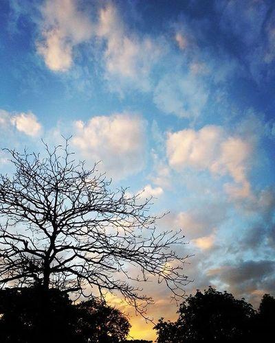 Sunset 😍👌⛅