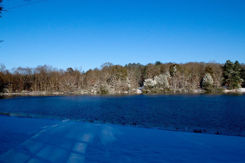Lake and trees covered with snow Montgomery AL Alabama Montgomery Montgomery, Al. Snow ❄ Alabama Outdoors Beauty In Nature Blue Clear Sky Cold Temperature Day Lake Landscape Nature No People Outdoors Scenics Sky Snow Covered Swimming Pool Tranquil Scene Tranquility Tree Water