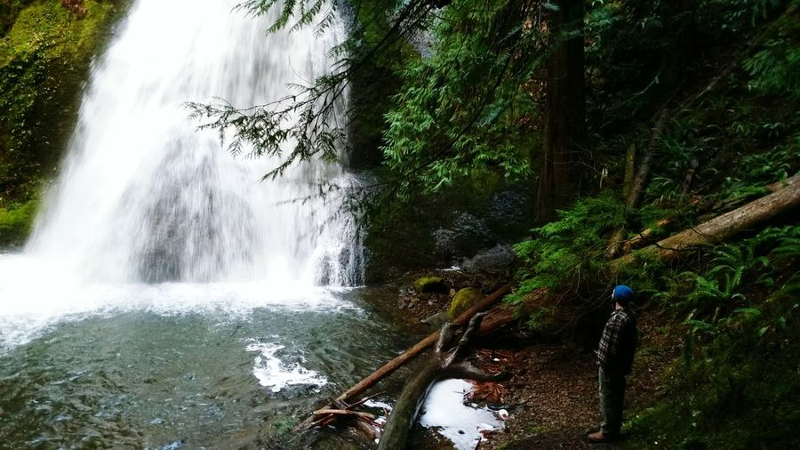 Hiking in the wonderous forests of Oregon First Eyeem Photo Nature Waterfall Water