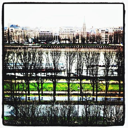 The View From My Window Seine