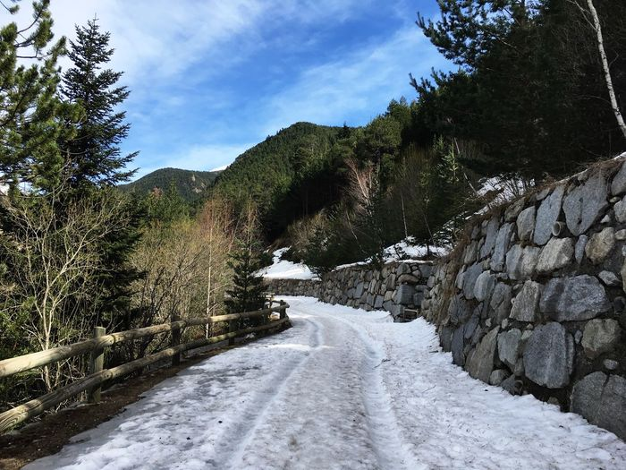 Andorra🇦🇩 Andorra Encamp Tree Plant Sky Snow Direction Cloud - Sky Nature Winter No People The Way Forward Cold Temperature Road Day Beauty In Nature Growth Tranquility Diminishing Perspective Tranquil Scene Outdoors