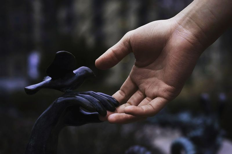 Cropped hand of man touching statue