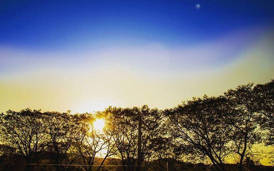 Summer Sun Bluesky Yellow Sky Instapicture Instagrammer Brazmu Doleitorzh Brazil_repost Braziliangram Respirofotografia Ig_riograndedosul_ Riograndedosul