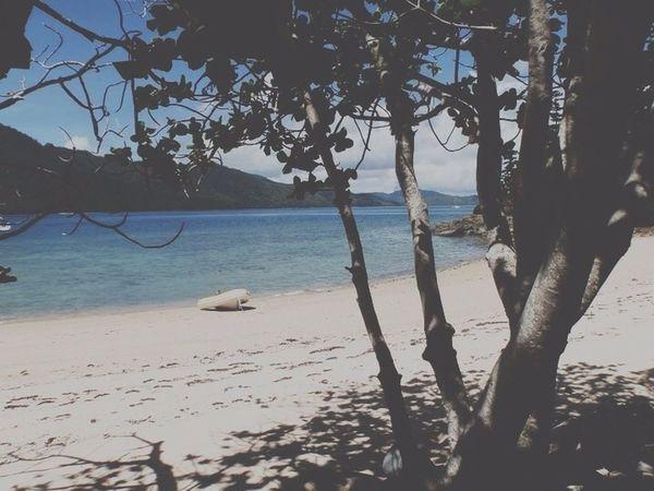 Take me back here!