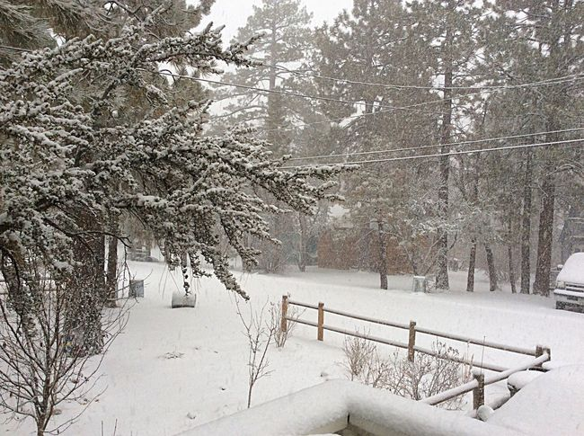 The winter snow in Big Bear.