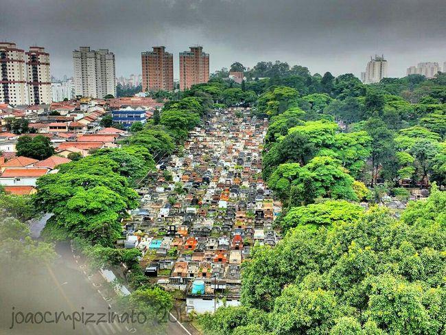 Cemitério Campo Grande - São Paulo. Cemetery Urban Zonasul Saopaulo Brasil