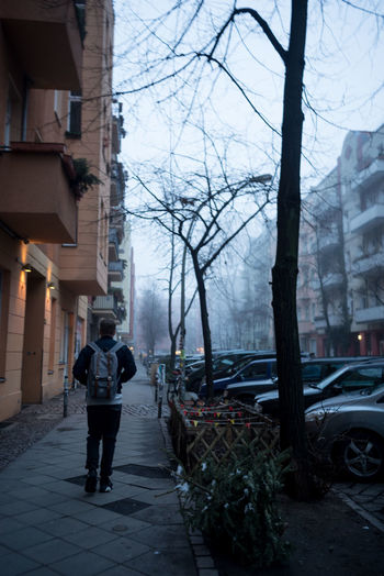 Berlin City City Life Europe Men One Man Only Snow Strees Streetphotography Tree Tree Trees Winter Young Adult