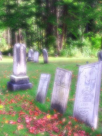 Taking Photos Cemetary Tombstones Soft Focus 4 Landscape Landscape_Collection