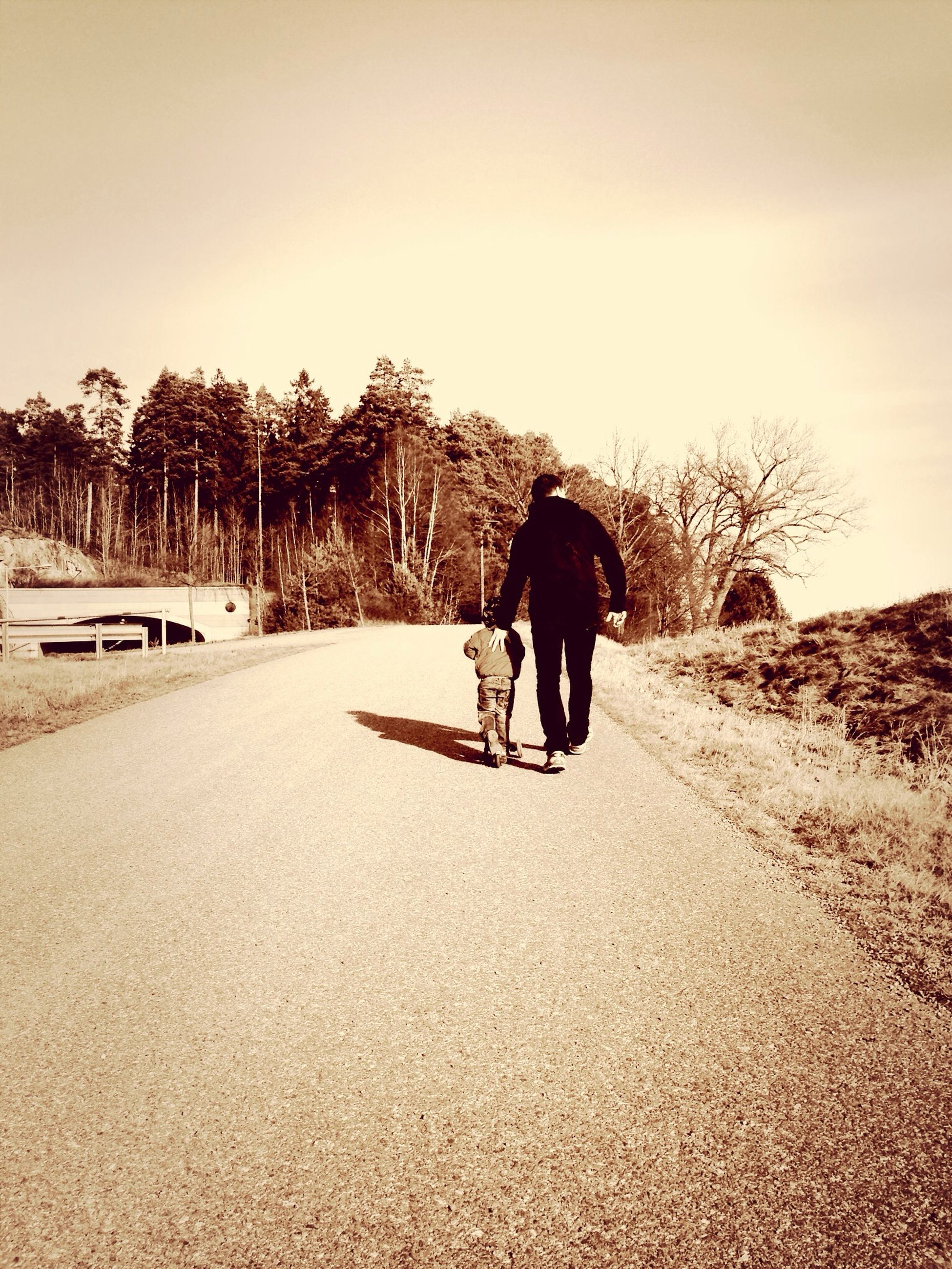 full length, rear view, walking, the way forward, tree, road, lifestyles, leisure activity, clear sky, men, transportation, landscape, dirt road, shadow, diminishing perspective, sunlight, street, tranquil scene