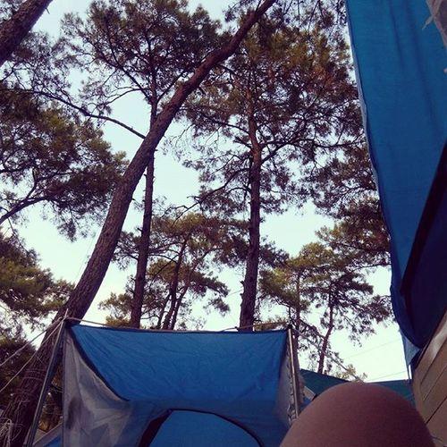 Bir kamp günlüğünden daha merhaba,hava tam yatmalik ve göğe bakmalık.. Marmaris çubucakormankampı Aksamdenizegirmesefasivar😘😄✌👏
