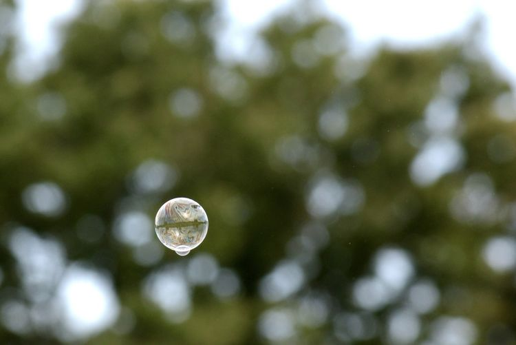 Low angle view of bubble against trees