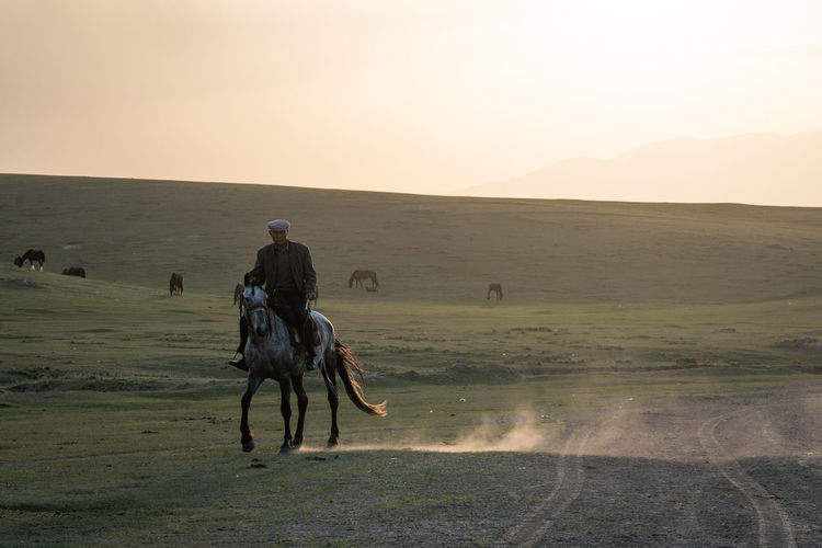 Men riding horse on land