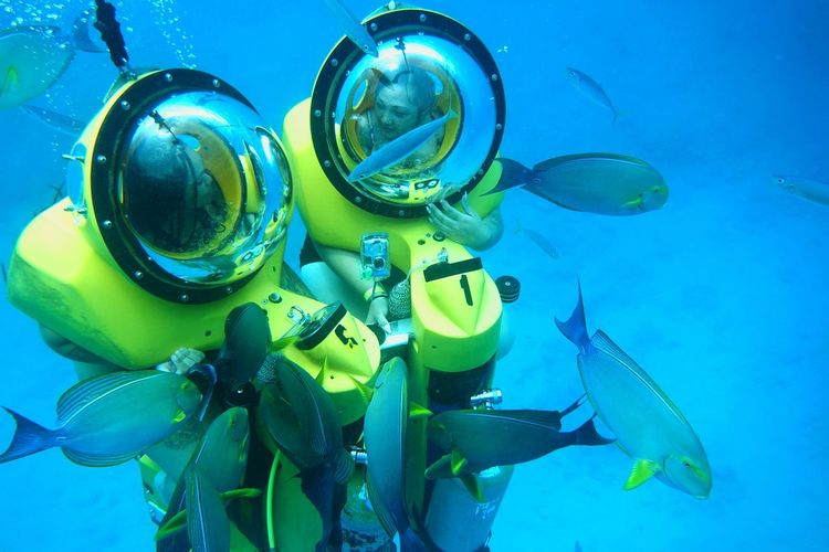 ScubaScooters Diving Equipment Multi Colored Blue Fish Deep Blue Underwater Underwaterphotography Underwaterconversations Friendship Goals Friendactivites Hawaiikai Taking Photos Leisure Activity Adventures Hanging Out Friendship ❤ Nature's Diversities Finding My Way Check This Out Hawaiik