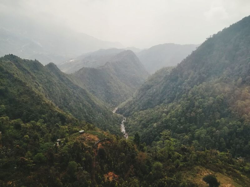river flows between the mountain EyeEm Selects EyeEm Day Mountain Mountains And Valleys Outdoors Nature Tea Crop Tree Tree Area Mountain Rural Scene Beauty Fog Forest Terraced Field Agriculture Agricultural Field Cultivated Land Rice Paddy Rice - Cereal Plant