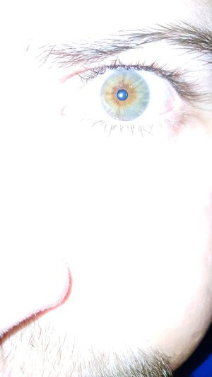 Color Eyes Face