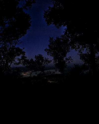 Coast Italy View Panorama Nightphotography Night Lights Night Photography Night Lights Stunning Light And Shadow Photography Photo Point Of View Astronomy Tree Space Star - Space Silhouette Milky Way Galaxy Moon Dark Sky Constellation Infinity