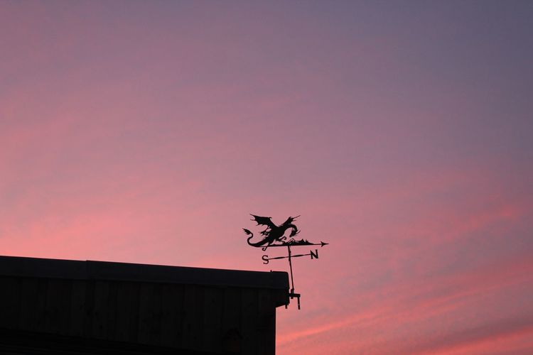 Low angle view of silhouette weather vane against orange sky