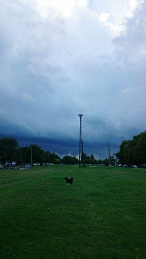 Tormenta aproximandose, La Plata, Buenos Aires, Argentina