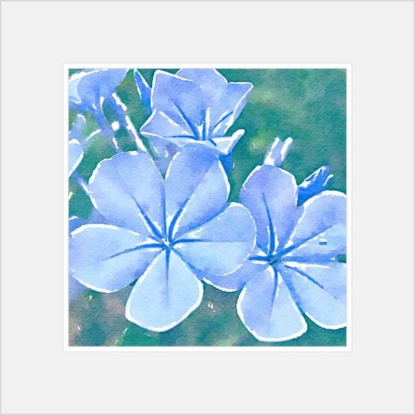 EyeEm Selects Auto Post Production Filter Blue No People Transfer Print Flowering Plant Nature Flower Close-up Pattern Art And Craft Floral Pattern Creativity