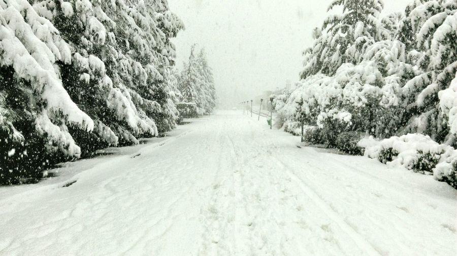 Deepfreeze Damascus  Syria  Nature Snowing Snow Day Snow ❄ Snow Whiteroads