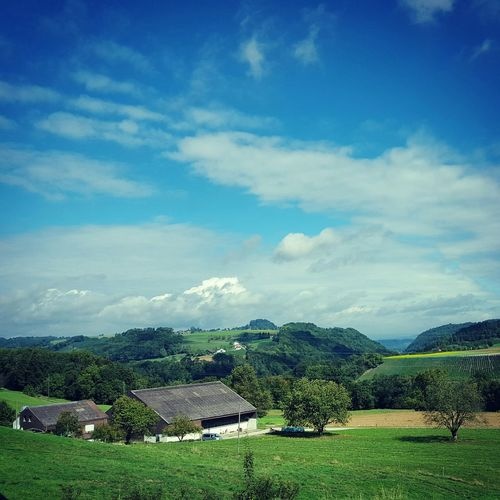 Rorbas Swiss Switzerland Landscape Landscape_Collection Landleben Bluesky Lebenaufdemland
