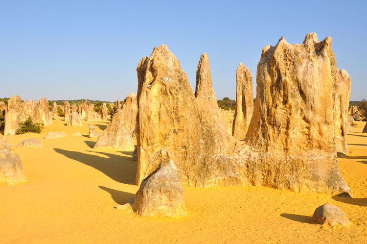 Unusual limestone rock formations in golden Pinnacles Desert near Cervantes in Western Australia. Australia Blue Sky Cervantes Day Desert Geology Golden Landscape Limestone Nambung National Park Natural Phenomenon Nature Outdoors Pinnacle Pinnacles Desert Rock Rock Formation Sand Scenics Sky Tranquility Travel Travel Destinations Unique Western Australia