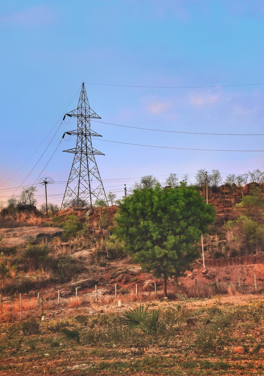 cable, sky, technology, land, electricity pylon, power line, tree, nature, electricity, connection, power supply, plant, field, no people, landscape, fuel and power generation, tranquility, tranquil scene, day, environment