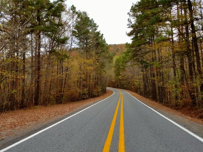 Fall Beauty Fall Season Roadtrip Road No People Nature Diminishing Perspective Sky Outdoors Autumn Colors Travel Destinations The Way Forward Autumn Leaves Lake Ouachita Arkansas, USA Perspectives On Nature Be. Ready.