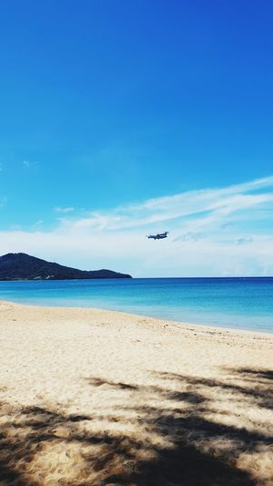 Water Flying Sea Clear Sky Flamingo Beach Aerospace Industry Blue Sand Airplane