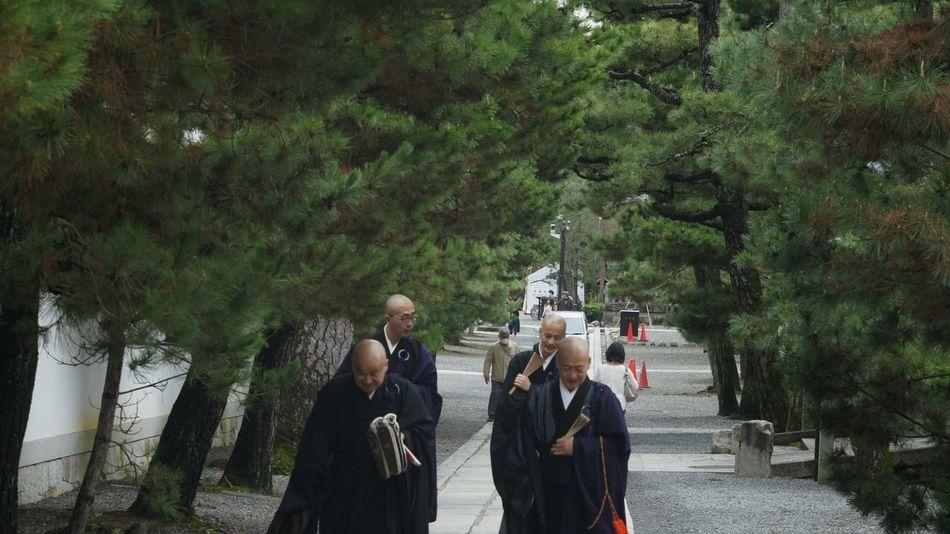 Buddhist Temple Buddhist Nex5 Elmar 9cm F4 Kyoto Elmar Elmar9cmf4