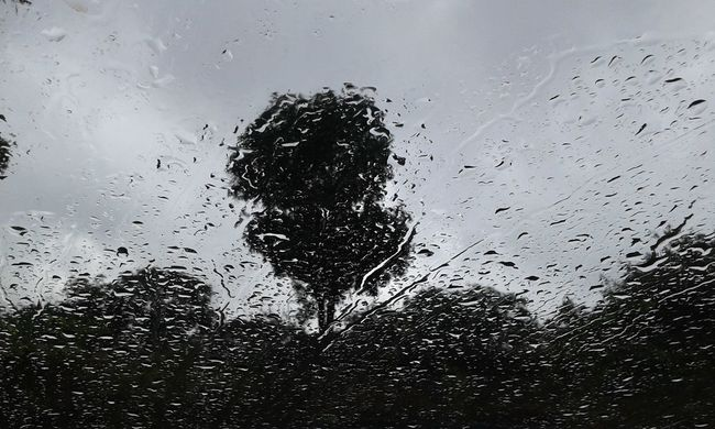 Raining Monsoon