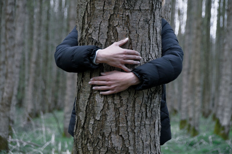 Man behind tree trunk in forest