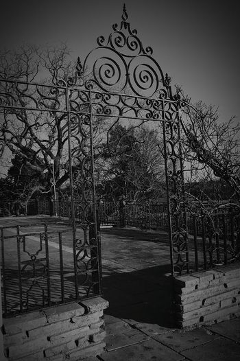 Going For A Walk In The Park Gate Iron Gate Gateway Garden Gate Brick Wall Garden Wall Trees Winter Trees Winter Time Nature Nature Photography EyeEm Nature Lover Black And White Photography Black & White Black And White United Kingdom Nikon D3200
