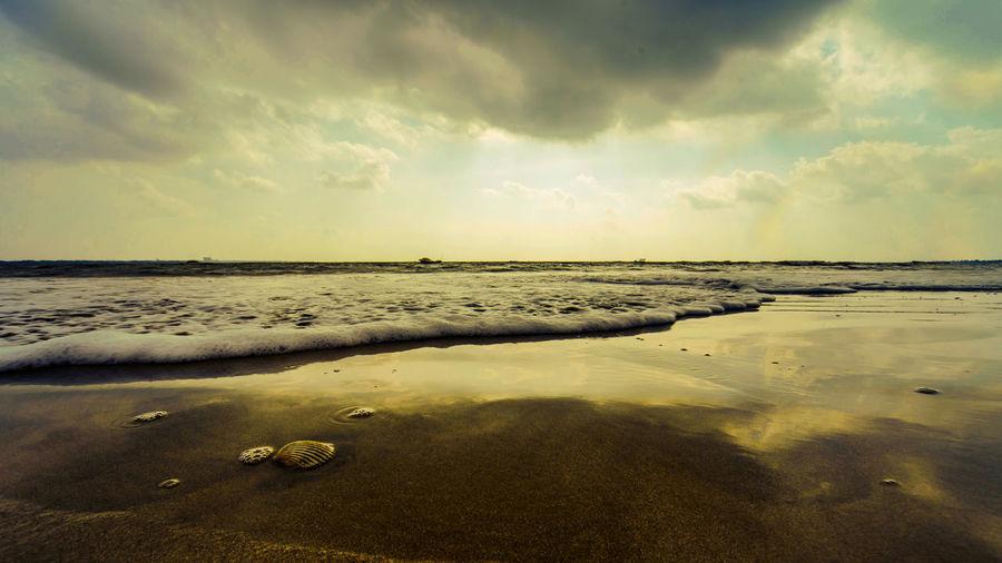一个大贝壳,躺在大海滩,里面藏珍珠,还是有甲肝。 shell Sky Cloud - Sky Sea Beach Sand Outdoors Horizon Shell