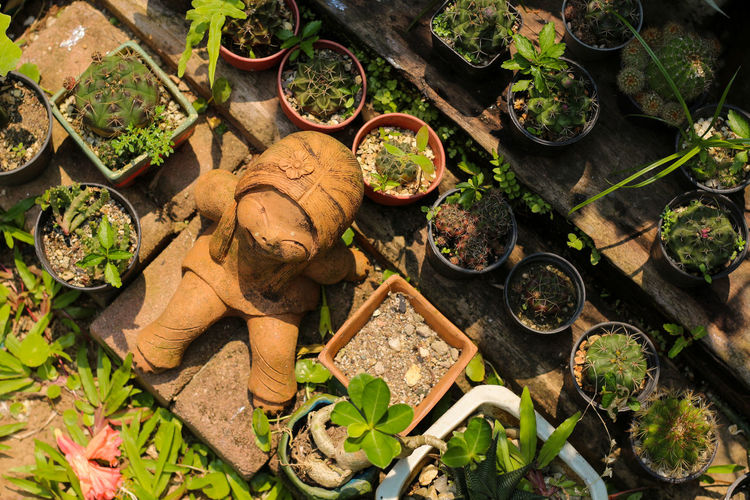 High angle view of statue amidst potted plants in yard