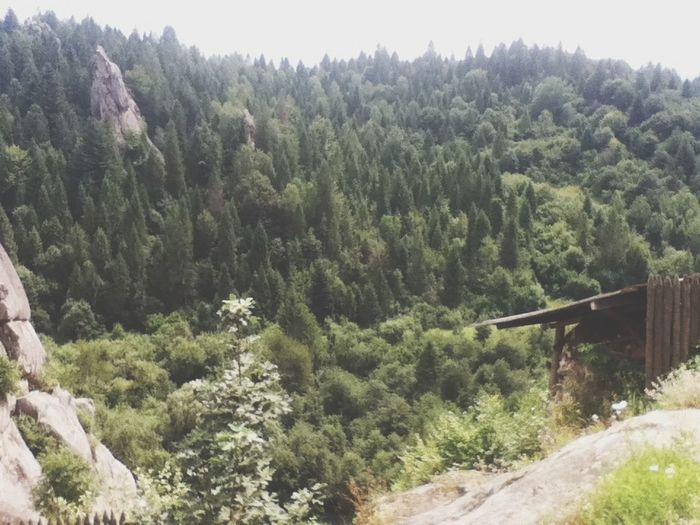 Тустань Mount