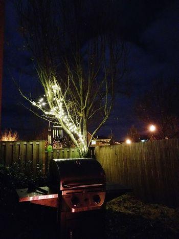 Backlight Reflection Firelight Night Illuminated No People Outdoors Sky Tree Christmas Decoration
