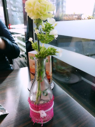 Flower Water Indoors  Freshness One Person Nature Day People Flower In A Vase On A Tablle Flower Head Flowers In Full Bloom Flowers Flowers In A Vase Cafetaria Sitting Behind The Window Made By Noesie EyeEmNewHere HuaweiP9Photography Freshness Art Is Everywhere The Week On EyeEm