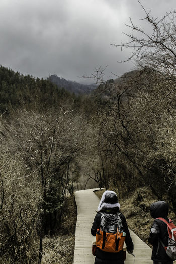 Adventure Bare Tree Beauty Boardwalk China Cloudy Day Forest Hiking Jiuzhaigou Nature Outdoors Path Pathway People Rear Scenics Sichuan Sky Tranquility Travel Tree Trees View Winter